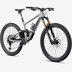 ENDURO SWORKS CARBON 29